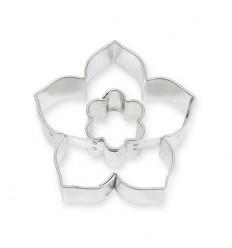 Lilie/květ